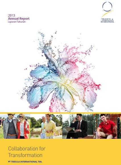 AR 2013 cover